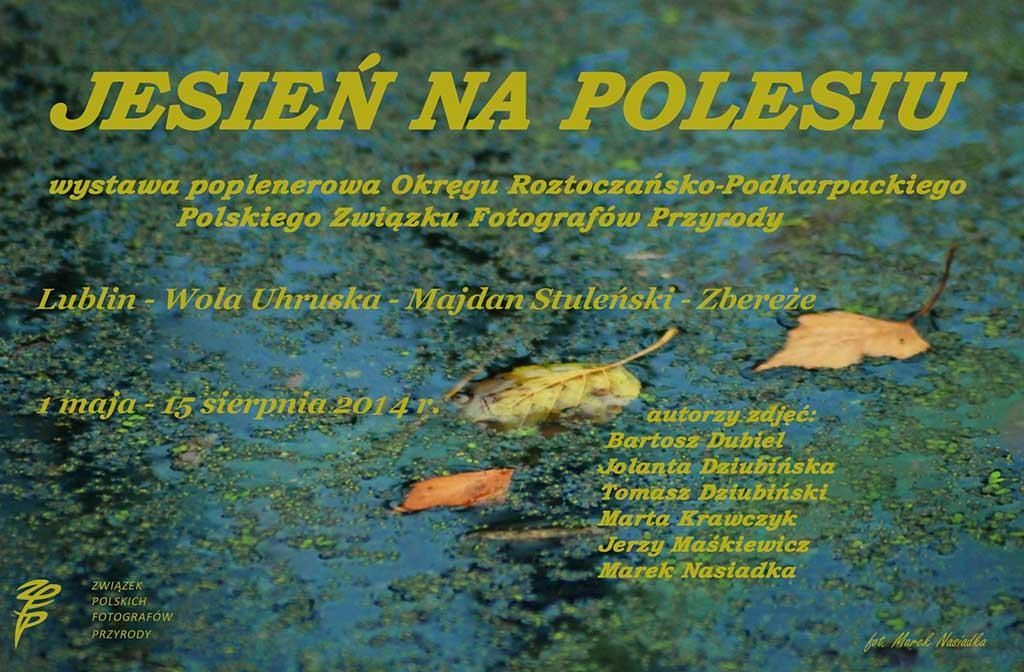 Jesień na Polesiu