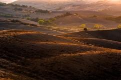 Typowy krajobraz regionu Val d,Orcia
